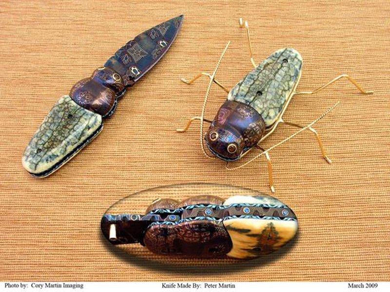 long_horned_beetle_forum_800.jpg