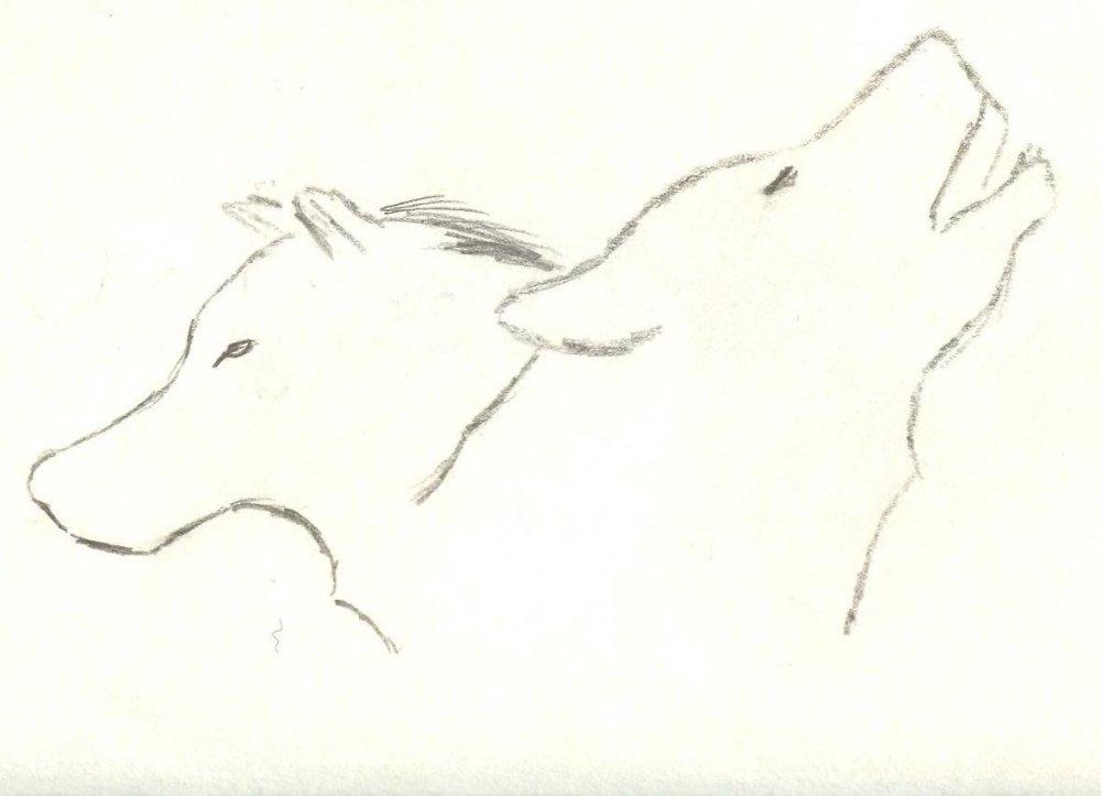 Two Wolves 001.jpg