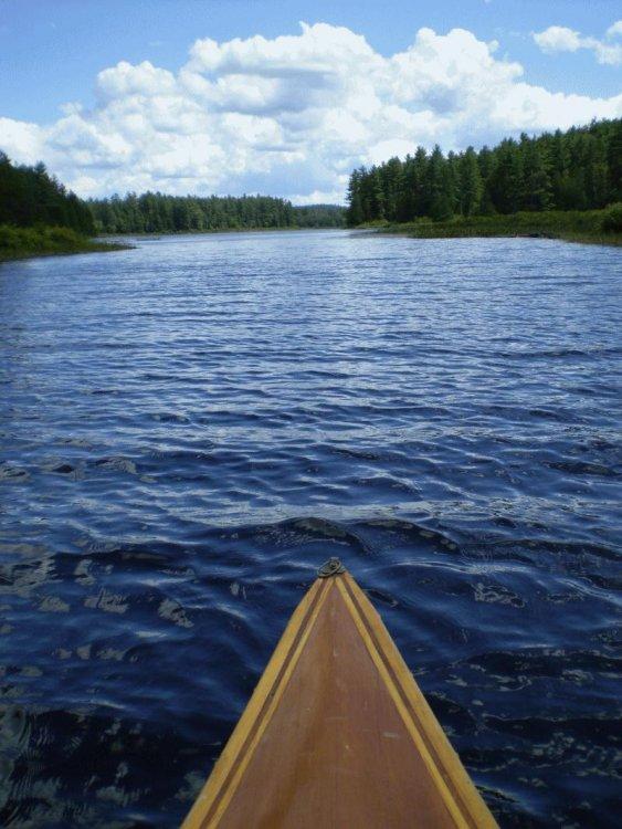 Barron River53.JPG