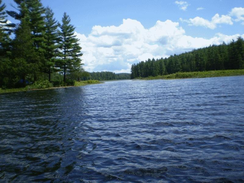 Barron River51.JPG