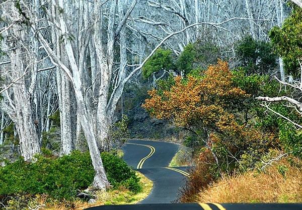 Big-Island-road.jpg