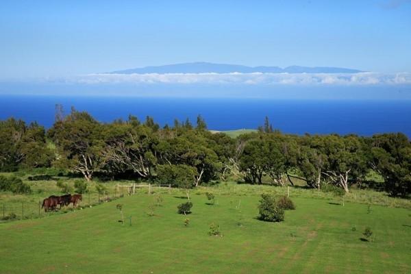 Maui_View_WR-600x400.jpg