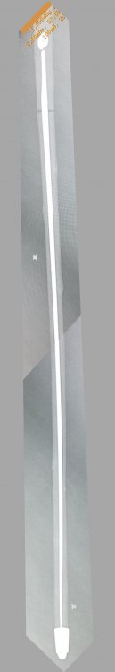 09 Stick Cane X-Ray - Corrected skew.jpg