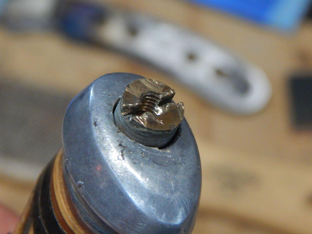 Cap nut V2.jpg