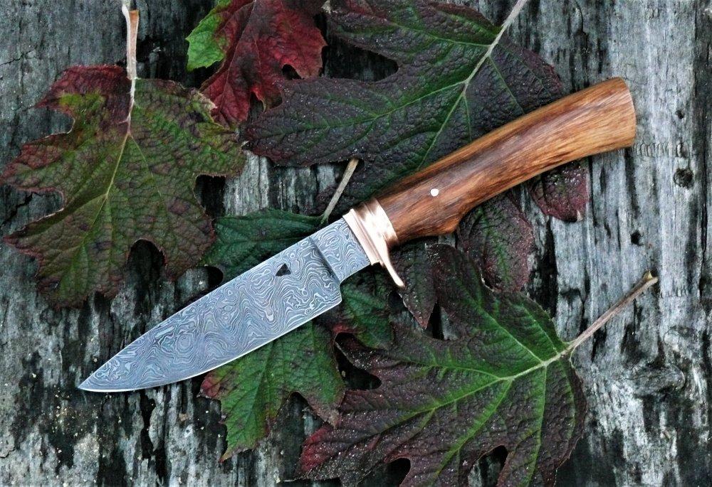259a Hunter .JPG