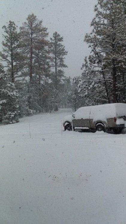 Snow 1 V2.jpg