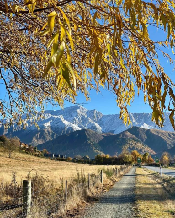 Arrowtown (3).png