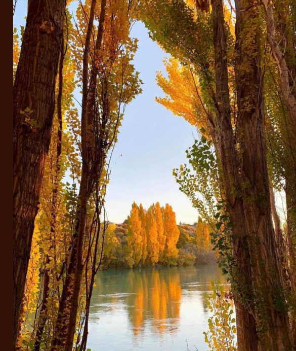 Clutha river at Alexandra.png