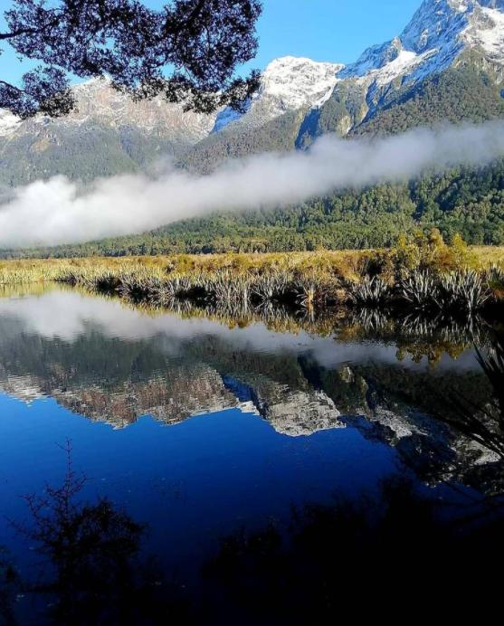 mirror lake Te anau.png
